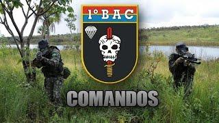 O DIA Q AS FARCS INVADIRAM O BRASIL E FOI DIZIMADA EM TERRITORIO COLOMBIANO PELO EXERCITO BRASILEIRO