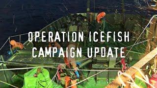 The Sam Simon Retrieves Illegal Gill Net Abandoned by Poachers