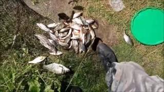 рибалка в Милятино, Калузька обл.