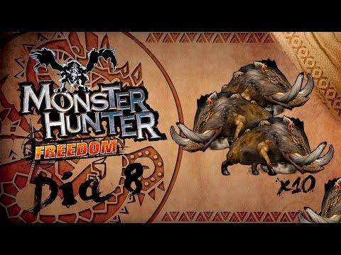 Monster hunter Freedom | Diario de un cazador | Día 8