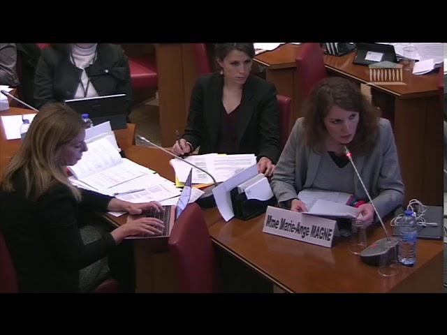 Projet de Loi Notre-Dame de Paris : comission affaires culturelles