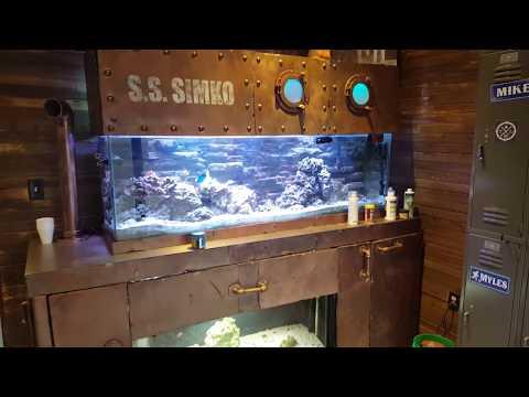 Giant red hairy hermit crab submarine tank