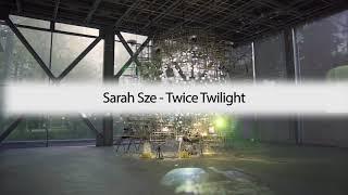 Sarah Sze | « Twice Twilight »