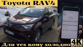 Toyota RAV4 - когда у автомобиля больше телефонных номеров, чем у тебя