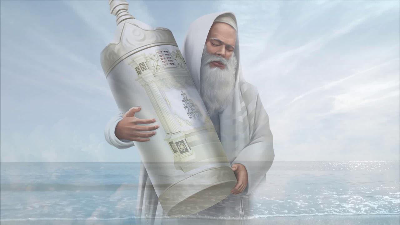 יוסף קרדונר - לב טהור