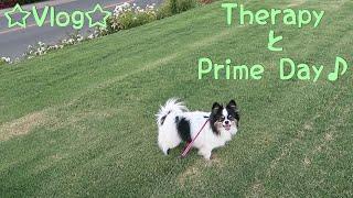 ☆Vlog☆TherapyとPrime Day♪ thumbnail