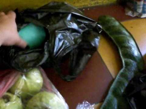Weird Fruits I got in El salvador