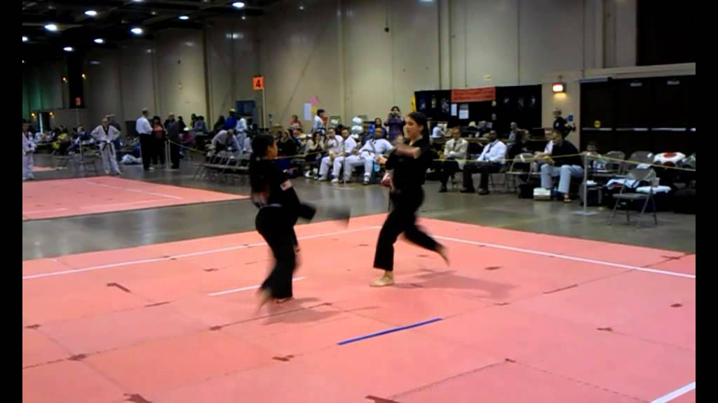 Taekwondo Fan Form