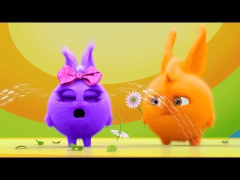 Sunny Bunnies   My Flower !   SUNNY BUNNIES COMPILATION   Cartoons for Children