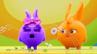 Sunny Bunnies | My Flower ! | SUNNY BUNNIES COMPILATION | Cartoons for Children