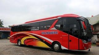 Halmahera | Legacy SR2 | Mercedes Benz O500R