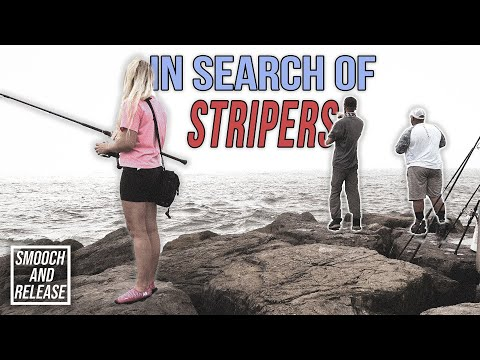 Surf Fishing In Search Of Striped Bass - Triggerfish - Bluefish - Mackerel - Long Island New York