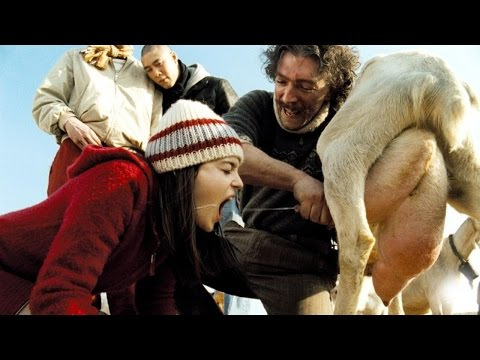 Best Comedy Movies - Best Italian Comedy...