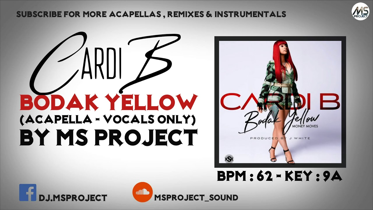 Cardi B - Bodak Yellow (Acapella - Vocals Only) [Explicit]