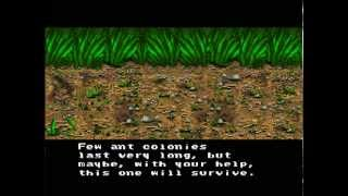 SimAnt: The Electronic Ant Colony: EPIC SNES game