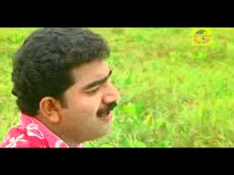 mappila song afsal hit