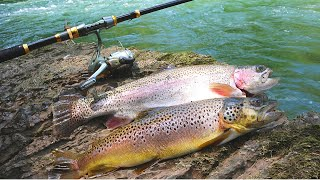 Find-Your-Own-Bait Trout Catch n' Cook Challenge!