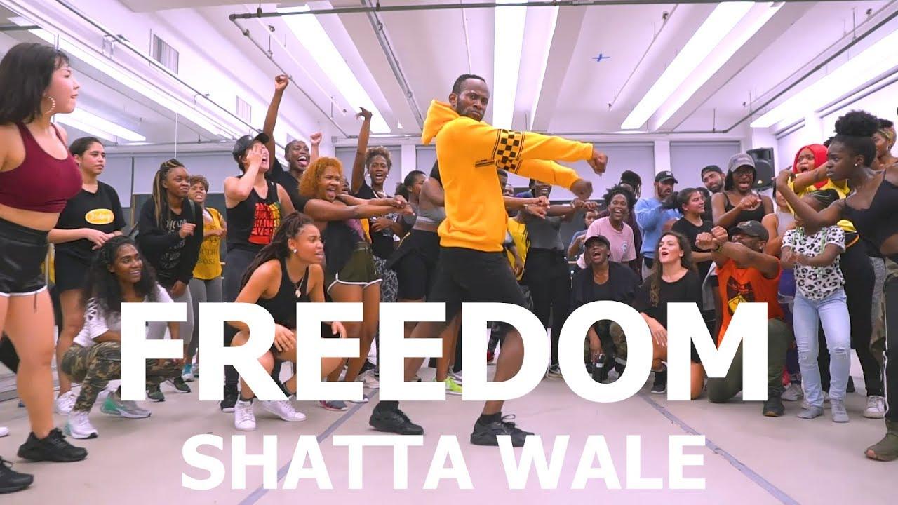 Shatta Wale - Freedom | Meka Oku Choreography