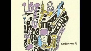 Damien Rice - The animals were gone
