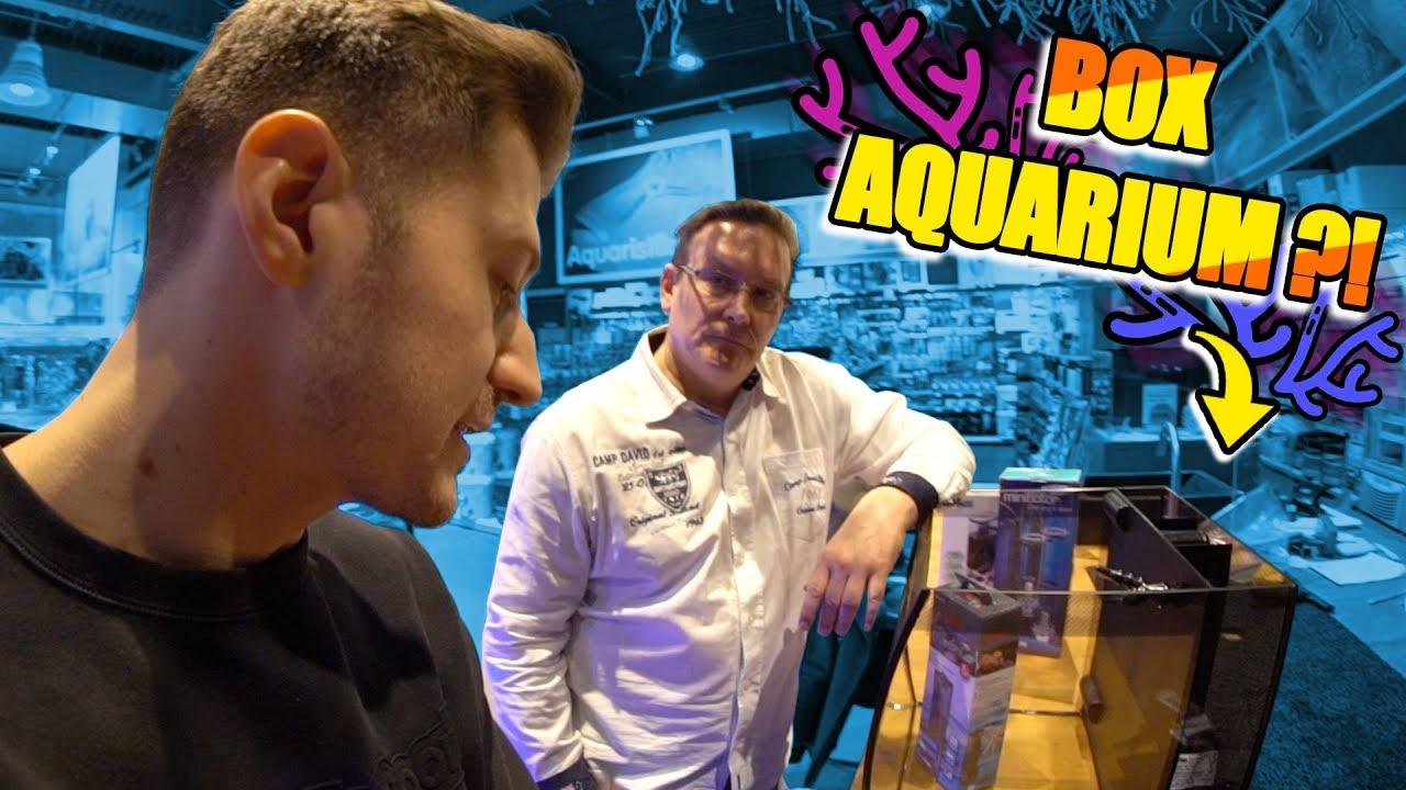 Download Das neue Aquarium aussuchen! 😍