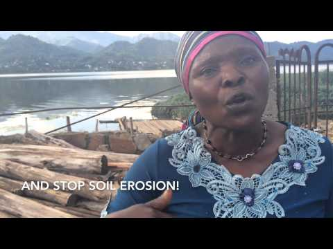 Twin's soil conservation work, Democratic Republic of Congo (DRC)
