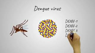 Novel vaccine approach to combat Dengue virus