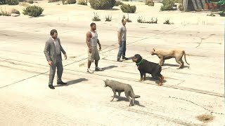 البشر ضد الحيوانات في قراند 5 GTA V