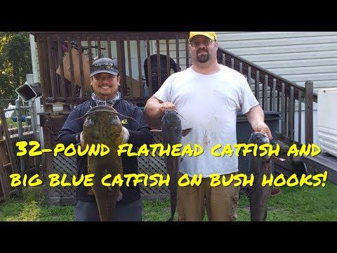 32-Pound Flathead Catfish On Limb Lines At Black Creek!