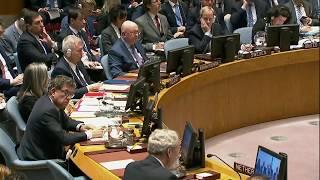 Экстренное заседание Совбез ООН по Сирии. Выступление Нидерланды