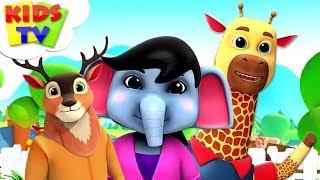 Zoo Song | Junior Squad | + More Kindergarten Nursery Rhymes - Kids Tv