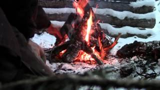 Little Known But Useful Campfire Wood