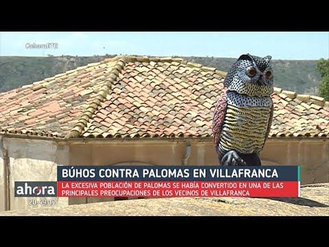 B hos de pl stico para ahuyentar a las palomas youtube for Ahuyentar palomas del balcon