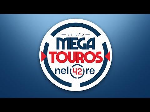 MEGA LOTE 105