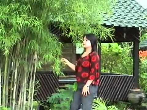 Lagu Lampung  Engok Janji  MEGA   YouTube