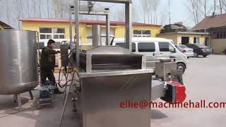 Factory Price Continuous Namkeen Fryer Machine Manufacturer