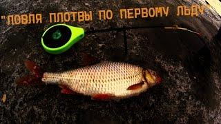 первый лед | ловля плотвы | зимняя рыбалка видео