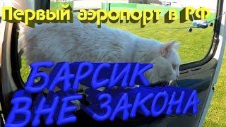 Кот вне закона, 25 часов на погрузке и первый построенный в России аэропорт