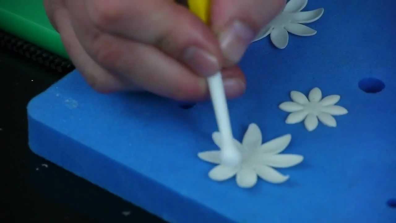 How To Make A Sugar Daisy Youtube