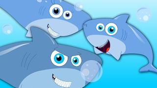 Five Little Sharks   Shark Song  