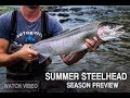 Rogue River Summer Steelhead Preview