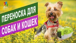 Переноска для собак и кошек | Обзор переноска для собак и кошек
