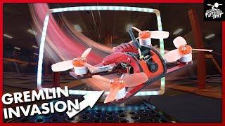 Gremlin Race at SkyZone | FLITE TEST