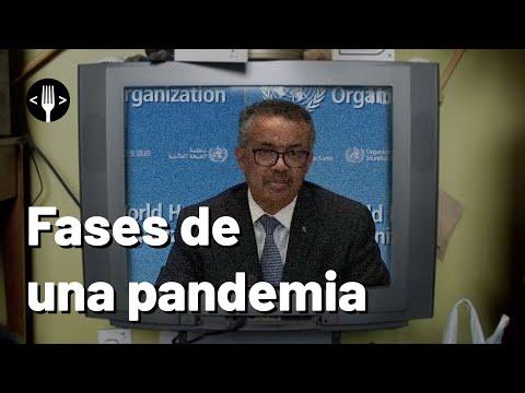 Las fases de una pandemia según la OMS
