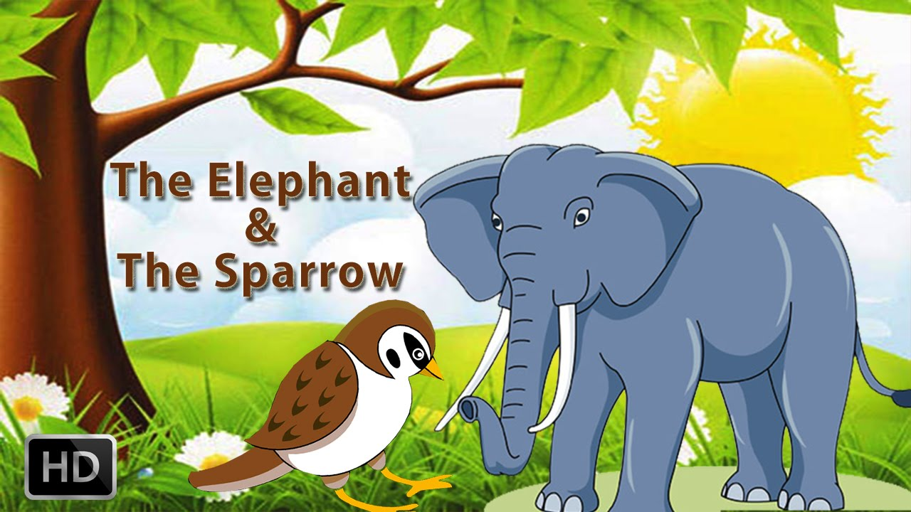 Image of: Draw Tales Of Panchatantra Animated Cartoons Kids The Elephant The Sparrow Animalbirds Stories Youtube Youtube Tales Of Panchatantra Animated Cartoons Kids The Elephant