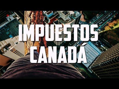Perdida por las calles de Calgary, Declaración de renta ||Working Holiday Visa Canadá