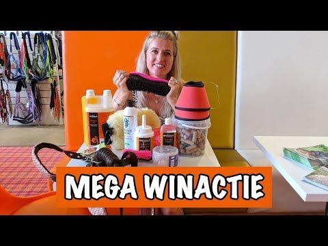 Britt shopt bij Epplejeck! | PaardenpraatTV