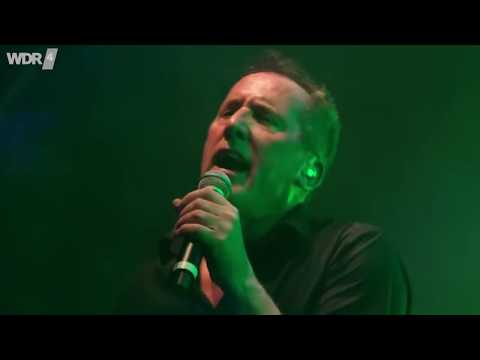 OMD - WDR 4 Sommer Open Air 2017