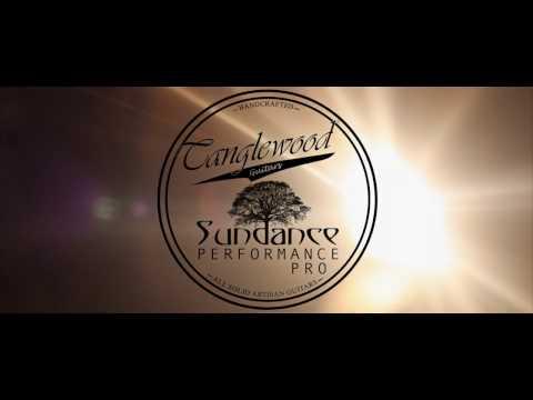 New for 2017 - Tanglewood - Sundance Performance Pro Series X15 SD TE