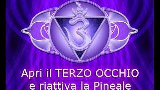Apertura del TERZO OCCHIO e riattivazione della Ghiandola Pineale - Daniele Penna - Digressione 7
