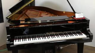 Yamaha Disklavier自動演奏鋼琴與音響合奏